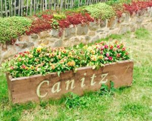 Wasserwerk Canitz Blumen