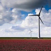Die Politik sollte sich wieder mehr von einer marktwirtschaftlichen Perpektive den Herausforderungen bei Klimaschutz und Energiepolitik nähern | Büro HItschfeld