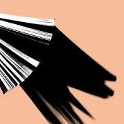 Publikationen: Akzeptanz in der Medien- und Protestgesellschaft. Zur Debatte um Akzeptanz, öffentliches Vertrauen, Transparenz und Partizipation
