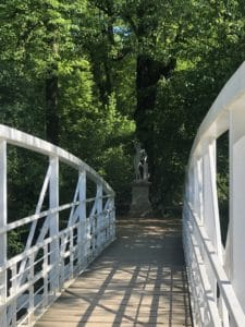 weiße Brücke, die in einen Wald führt